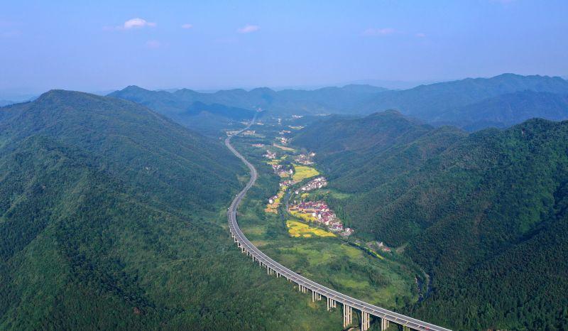 江西泰和:生态林区美如画