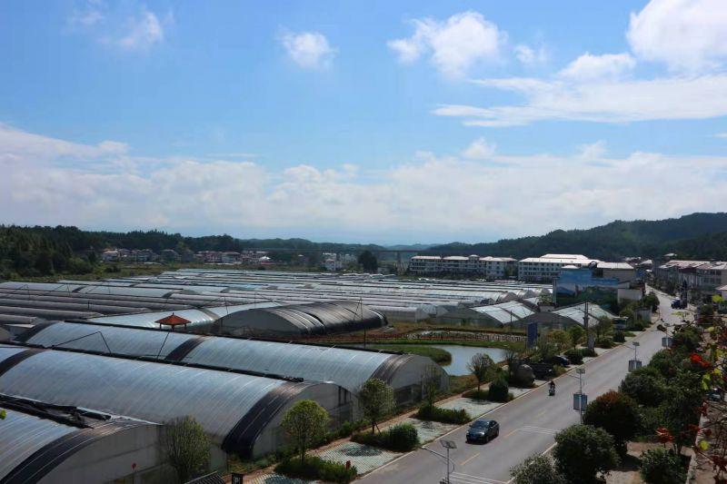 江西石城:乡村美 产业兴